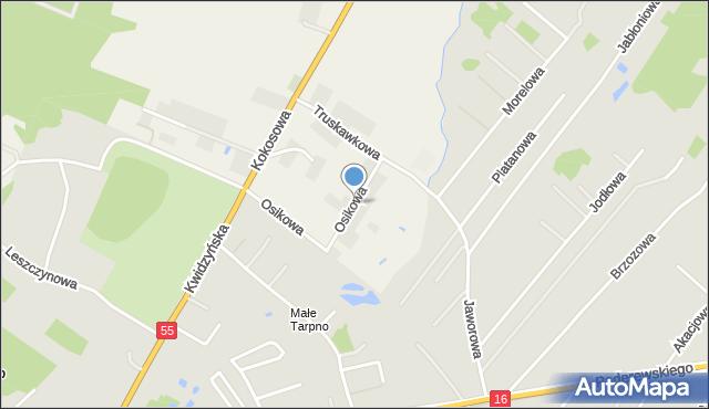 Świerkocin gmina Grudziądz, Osikowa, mapa Świerkocin gmina Grudziądz