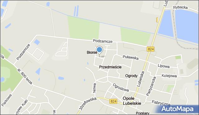 Opole Lubelskie, Pawia, mapa Opole Lubelskie