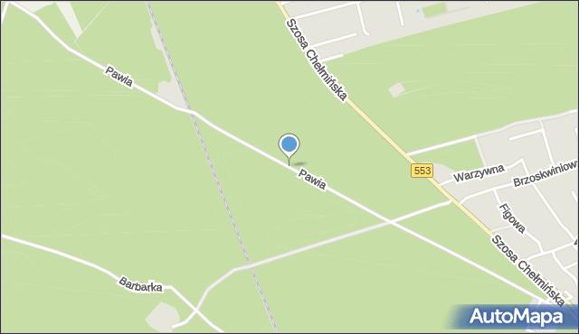 Toruń, Pawia, mapa Torunia