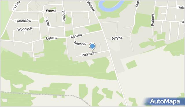 Toruń, Perkoza, mapa Torunia