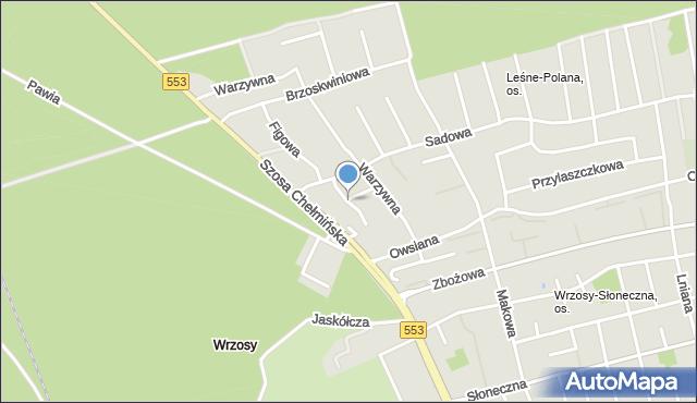 Toruń, Pigwowa, mapa Torunia