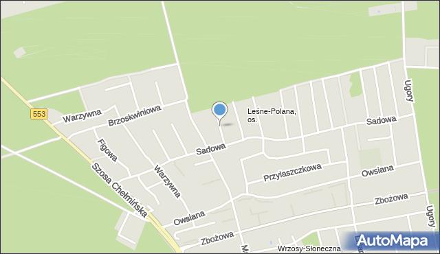 Toruń, Pistacjowa, mapa Torunia