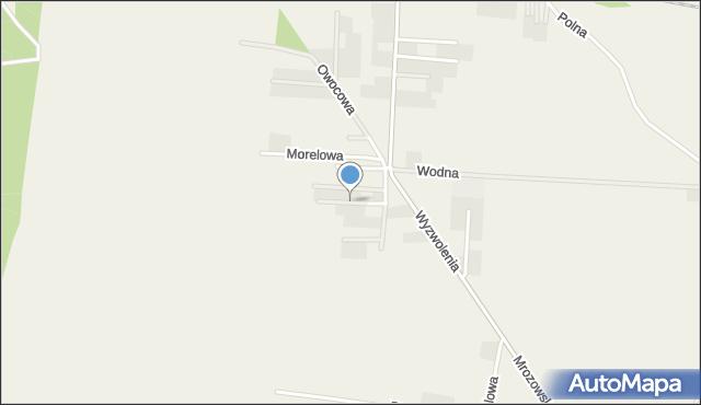 Mrozów, Poziomkowa, mapa Mrozów