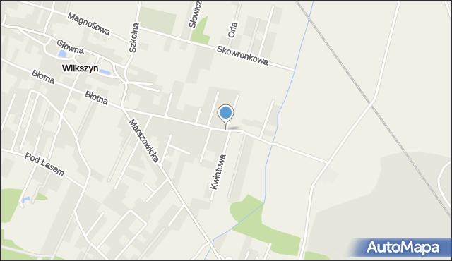 Wilkszyn, Polna, mapa Wilkszyn