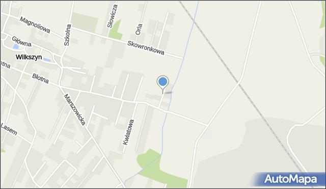 Wilkszyn, Północna, mapa Wilkszyn