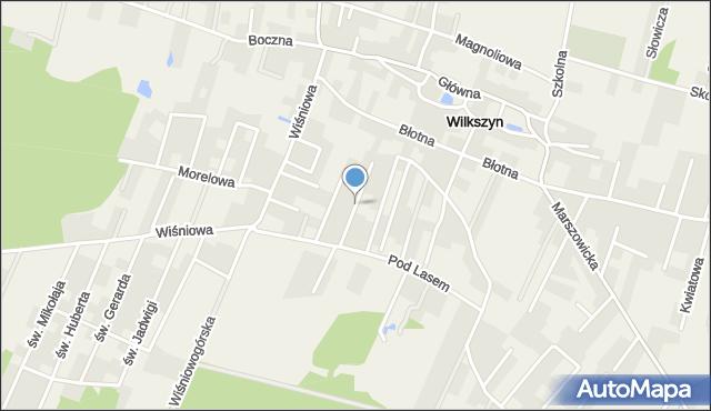 Wilkszyn, Poziomkowa, mapa Wilkszyn