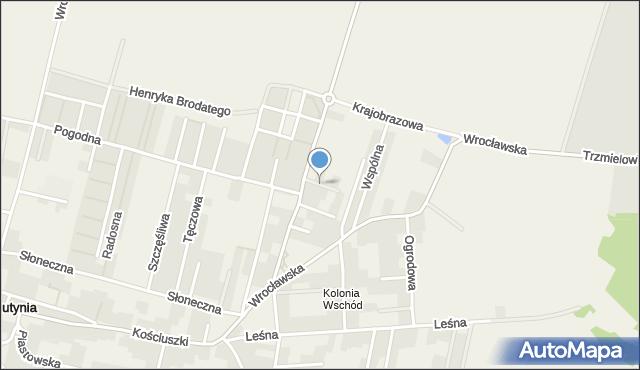 Lutynia gmina Miękinia, Promienna, mapa Lutynia gmina Miękinia