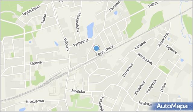 Luzino, Przy Torze, mapa Luzino