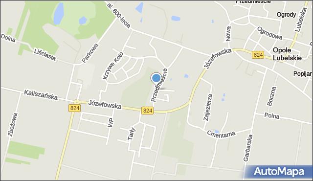 Opole Lubelskie, Przedmieście, mapa Opole Lubelskie