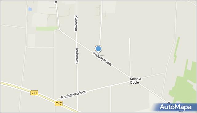 Opole Lubelskie, Przemysłowa, mapa Opole Lubelskie
