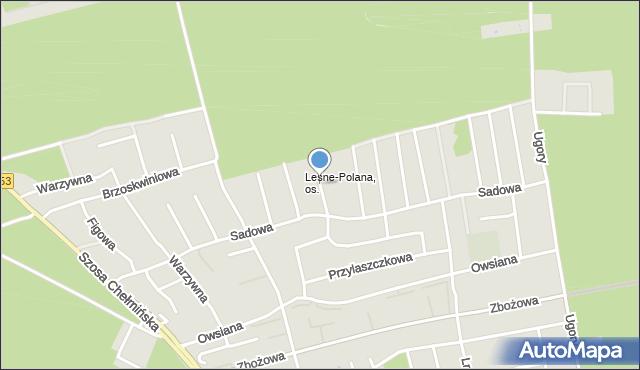Toruń, Prosowa, mapa Torunia