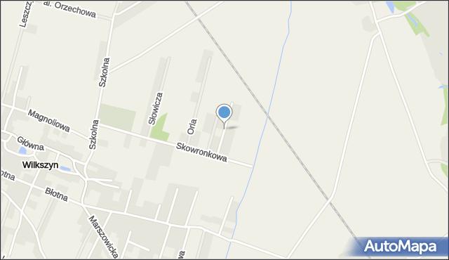 Wilkszyn, Przepiórcza, mapa Wilkszyn