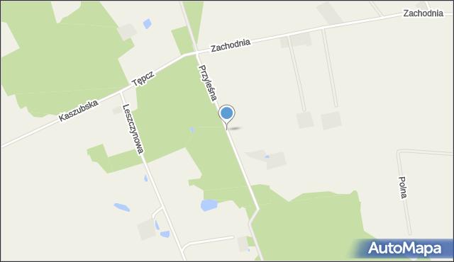 Wyszecino, Przyleśna, mapa Wyszecino
