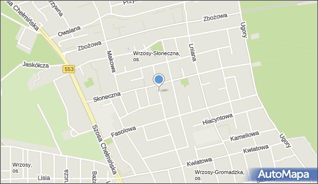 Toruń, Pszeniczna, mapa Torunia