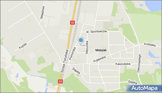 Grudziądz, Puszkina Aleksandra, mapa Grudziądza