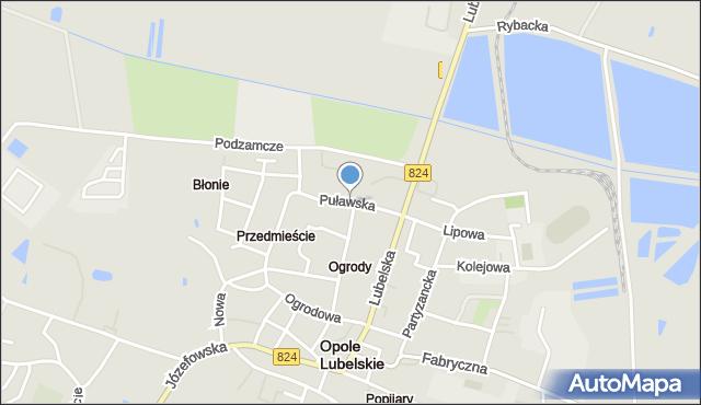 Opole Lubelskie, Puławska, mapa Opole Lubelskie