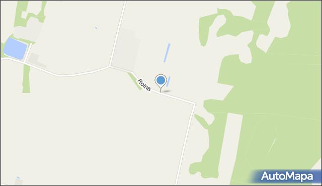Srebrzyszcze, Rolna, mapa Srebrzyszcze
