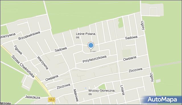 Toruń, Rodzynkowa, mapa Torunia
