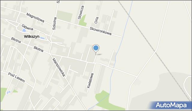 Wilkszyn, Rumiankowa, mapa Wilkszyn