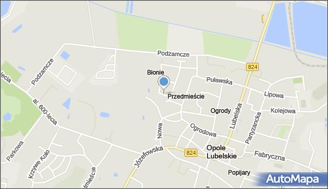 Opole Lubelskie, Rzeczna, mapa Opole Lubelskie