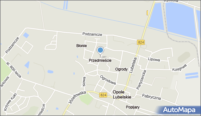 Opole Lubelskie, Rzemieślnicza, mapa Opole Lubelskie