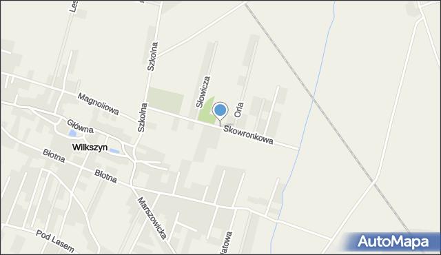 Wilkszyn, Skowronkowa, mapa Wilkszyn