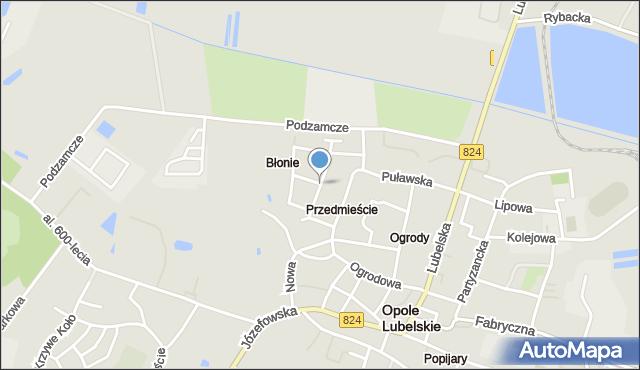 Opole Lubelskie, Słowackiego Juliusza, mapa Opole Lubelskie