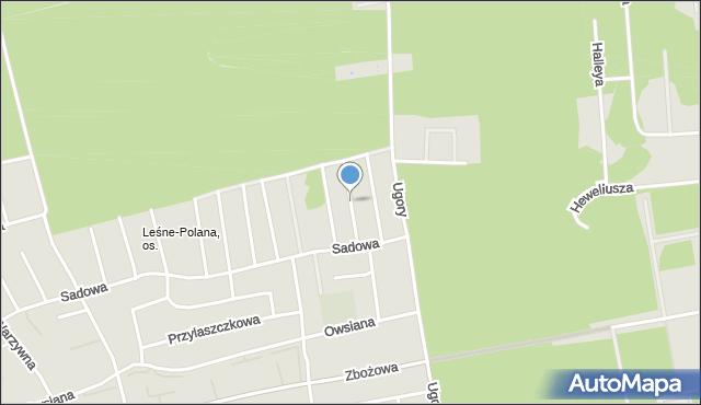 Toruń, Śliwowa, mapa Torunia