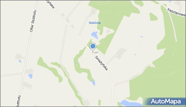 Wyszecino, Smażyńska, mapa Wyszecino