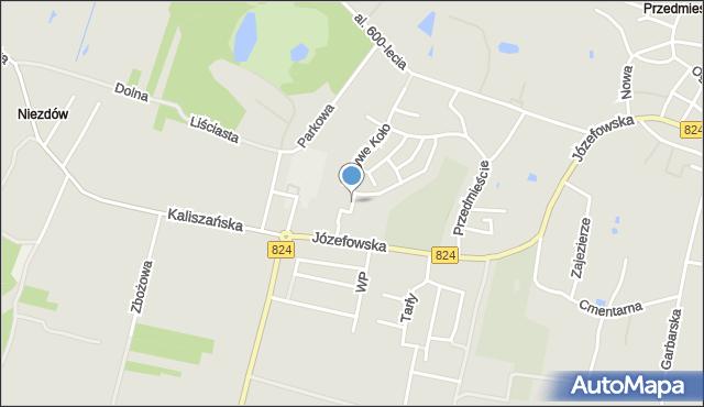 Opole Lubelskie, Sosnowa, mapa Opole Lubelskie