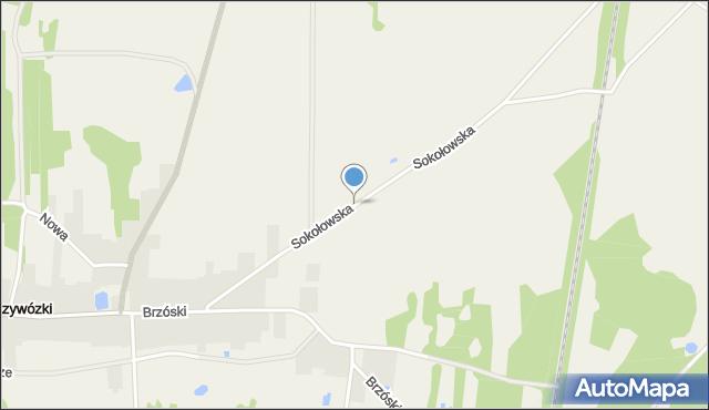 Przywózki, Sokołowska, mapa Przywózki
