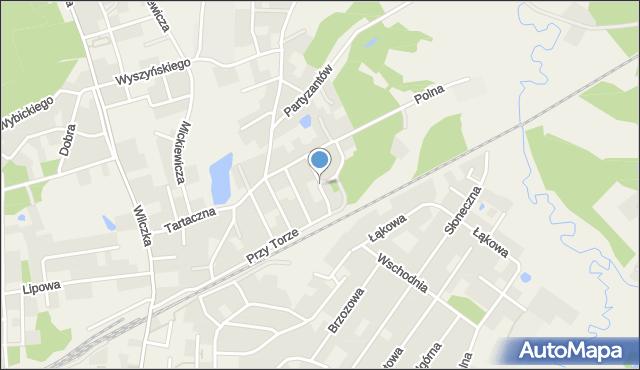 Luzino, Spacerowa, mapa Luzino