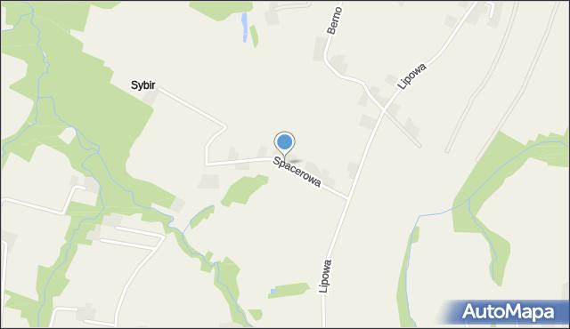 Nidek, Spacerowa, mapa Nidek