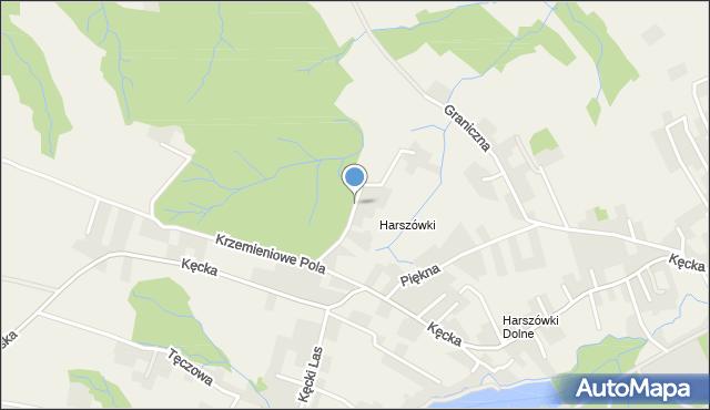 Pisarzowice gmina Wilamowice, Spacerowa, mapa Pisarzowice gmina Wilamowice