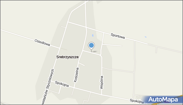 Srebrzyszcze, Spacerowa, mapa Srebrzyszcze