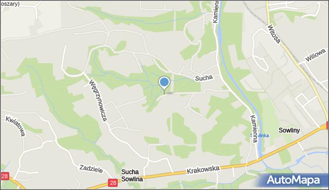 Limanowa, Stroma, mapa Limanowa