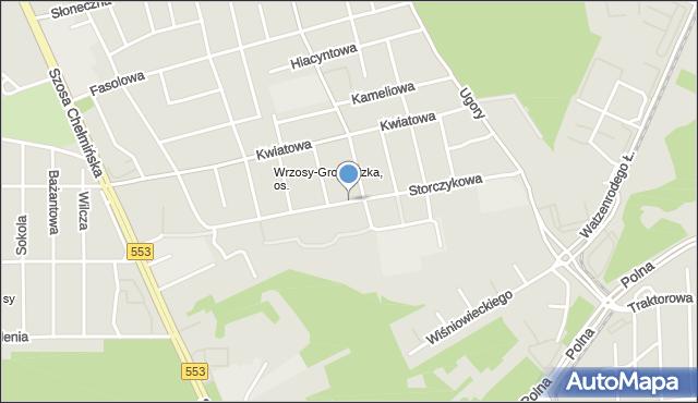 Toruń, Storczykowa, mapa Torunia
