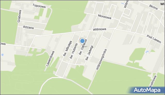 Wilkszyn, św. Gerarda, mapa Wilkszyn