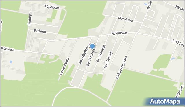 Wilkszyn, św. Huberta, mapa Wilkszyn