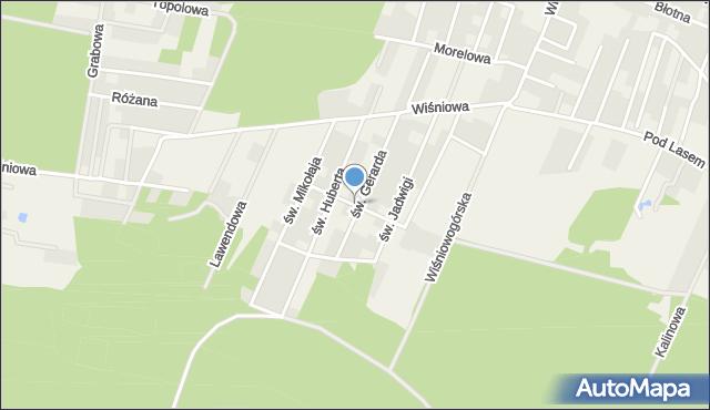 Wilkszyn, św. Jacka, mapa Wilkszyn