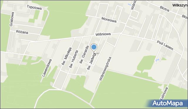 Wilkszyn, św. Jadwigi, mapa Wilkszyn