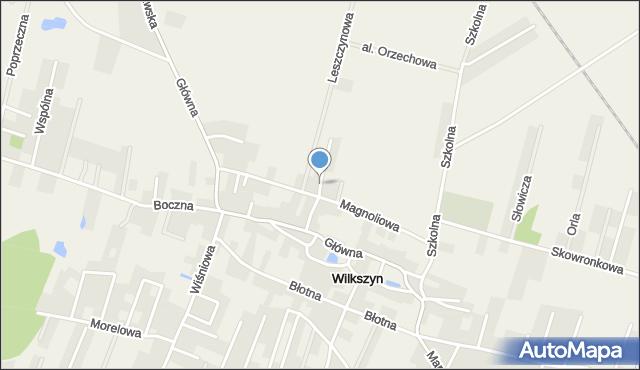 Wilkszyn, św. Józefa, mapa Wilkszyn