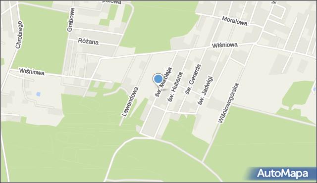 Wilkszyn, św. Mikołaja, mapa Wilkszyn