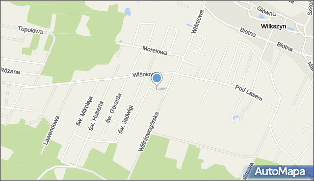 Wilkszyn, św. Piotra, mapa Wilkszyn