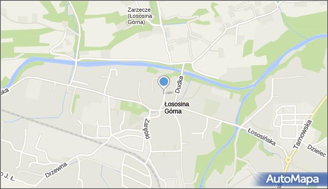 Limanowa, Szkolna, mapa Limanowa