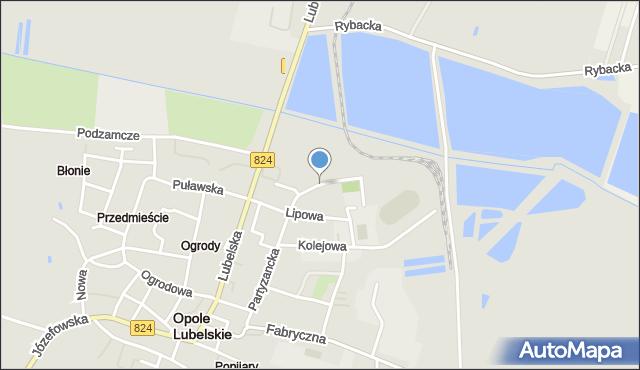 Opole Lubelskie, Szpitalna, mapa Opole Lubelskie