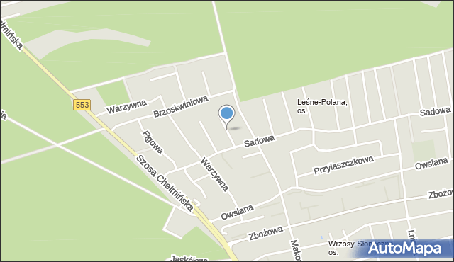 Toruń, Szałwiowa, mapa Torunia