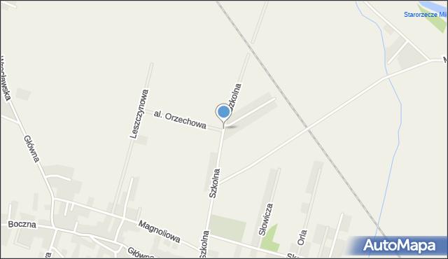 Wilkszyn, Szkolna, mapa Wilkszyn