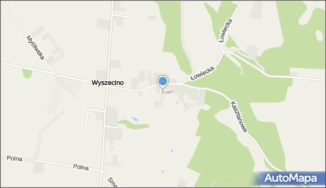 Wyszecino, Szczęśliwa, mapa Wyszecino