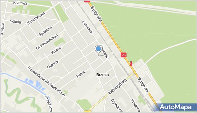 Brzoza gmina Nowa Wieś Wielka, Topolowa, mapa Brzoza gmina Nowa Wieś Wielka